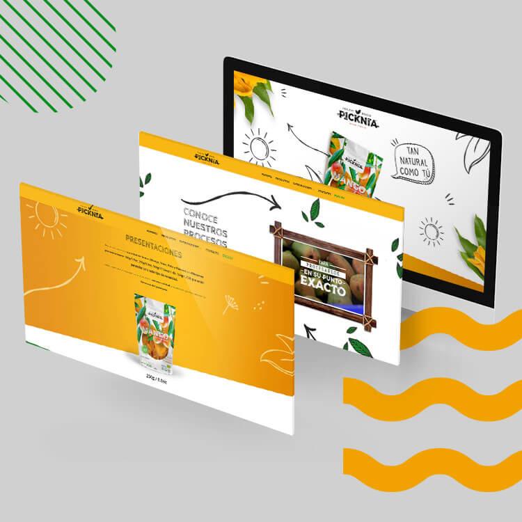 agencia-de-publicidad-colateral-picknia-web-2